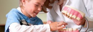 Read more about the article Make Your Child Love the Dentist