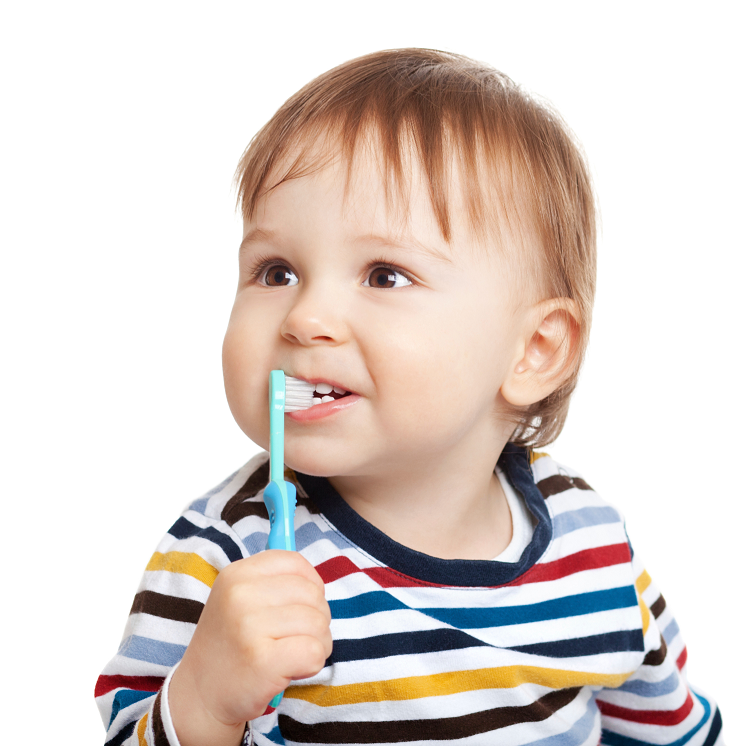 When Should I Take My Child to the Dentist for the First Time?