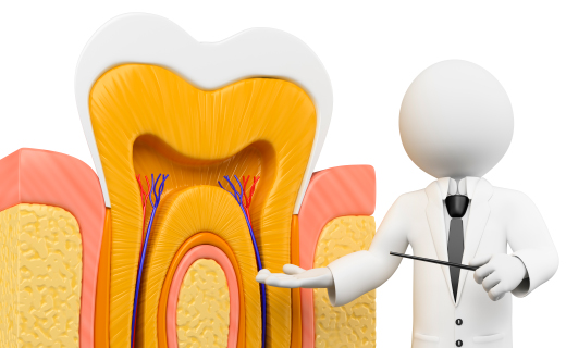 Looking For Root Canal Treatment In Calgary?